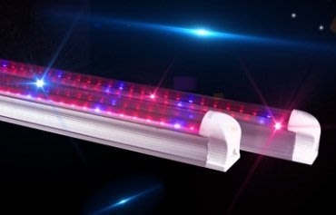 植物燈全光譜4:1紅:藍T8/ 4尺燈管(已含有燈座)+40元付上1.5米電線+線上開關 適合室內種植&水族箱水草生長 內 台南市
