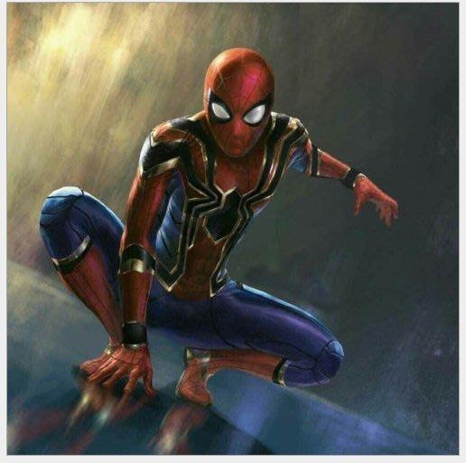 暖暖本舖 蜘蛛人套裝 蜘蛛人頭套 面罩面具 復仇者聯盟3 蜘蛛俠 鋼鐵人 雷神索爾 水行俠 美國隊長 死侍 另有多款套裝