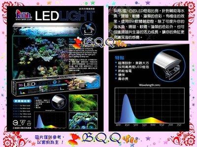 [B.Q.Q小舖]鐳力Leilih《軟體輔助燈.120cm(W-BW-40)19藍9白》LED/4尺