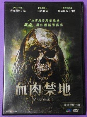 【大謙】《 血肉禁地~以血灌溉的萬惡叢林,進去...就休想活著出來》 台灣正版二手DVD