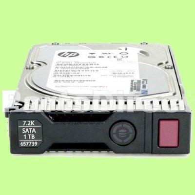"5Cgo【權宇】HP 1TB 6G SATA 7.2k 3.5"" Gen8 硬碟 657750-B21 含稅會員扣5%"