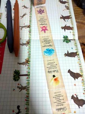【R的雜貨舖】紙膠帶分裝(非整捲) 日本mt和紙膠帶 mt fab 虛線票券風 花