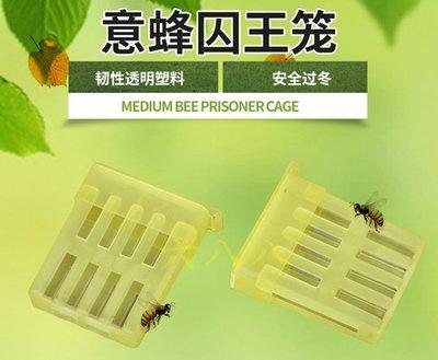 【688蜂具】義蜂塑膠薄型王籠 關王 禁王籠 囚王籠工具 控王籠 義蜂 意蜂 中蜂 洋蜂 土蜂 野蜂 養蜂工具 保護罩
