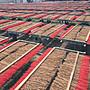 【一品沉香】【順化沉立香】越南惠安系三斤只要1000元 【免運】工廠自營自銷售,第一手價格