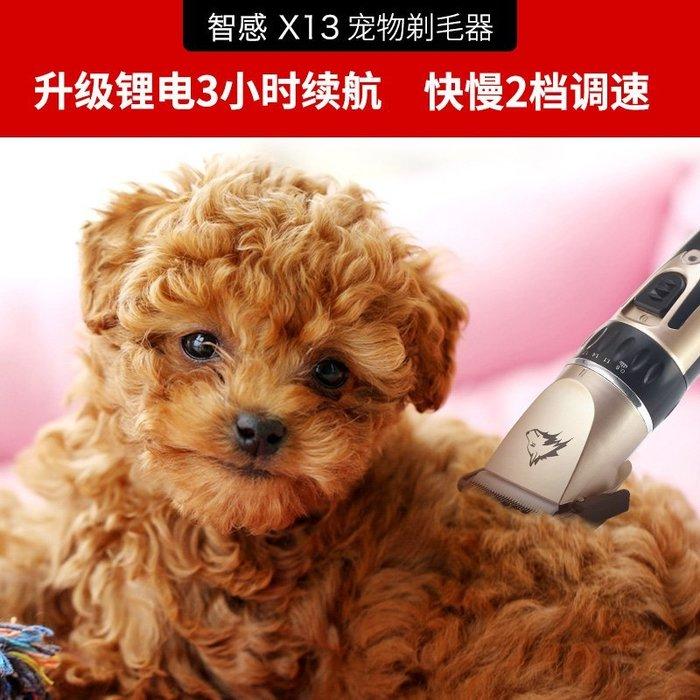 現貨/寵物專用剃毛器電推剪給狗狗推毛剃毛機大小狗貓電動泰迪剪毛神器10SP5RL/ 最低促銷價