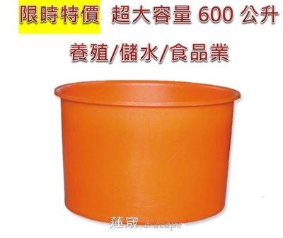 限時特價 600公升圓形桶 普力桶 超大容量 強化桶  養殖桶 儲水桶 藥劑儲槽 活魚桶 運輸桶 M-600大型水桶 台中市
