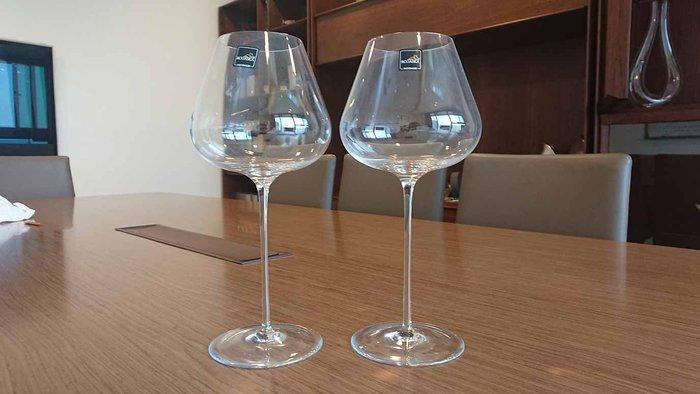 《Topluxurydesign》歐洲原裝進口 ROGASKA 紅酒高腳杯 一組兩入
