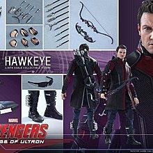 Hottoys Hawkeye 2.0 全新未開封 靚盒