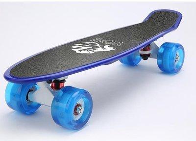 店長嚴選滑板初學者兒童成人青少年男女生四輪公路刷街香蕉板滑板車