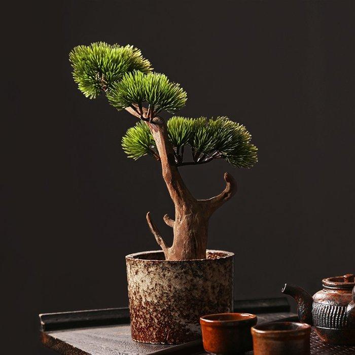 貓先生  隨形天然 枯木盆景  羅漢迎 客松仿真 擺件綠植  禪意中 式室內家 居裝飾