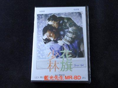 [DVD] - 英雄會少林 ( 花旗少林 ) Treasure Hunt