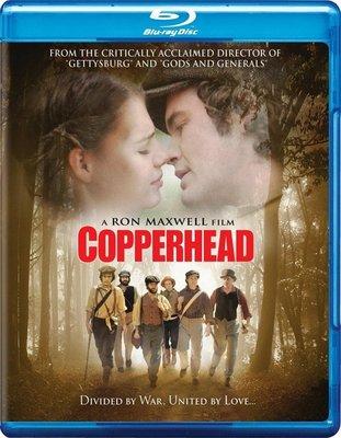 【藍光電影】內戰之痛 (2013)Copperhead 39-050