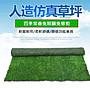 【內有防燄實測影片】人工草皮 人造草坪(草高度2公分)可定制裁剪尺吋 兒童地墊 寵物運動 人工草坪 草坪地毯排水隔熱