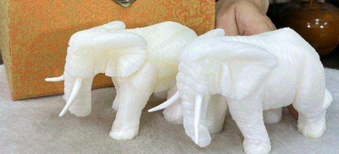 精選天然 硨磲大象