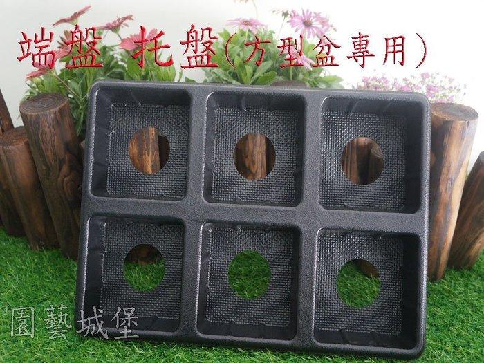 【園藝城堡】端盤 托盤(方型盆專用)~6格方孔