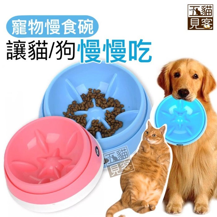 高品質不傷嘴【寵物慢食碗(M號)】慢食碗 寵物碗 慢食 寵物飼料碗 狗碗 貓碗 寵物減肥 狗飼料 五貓見客