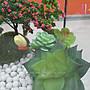 ☆[Hankaro]☆DIY微景觀生態造景立體房屋形狀花瓶