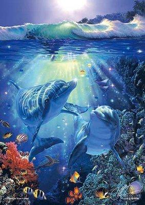 日本拼圖 Lassen 海洋 海豚 108片夜絕版光拼圖.84-952