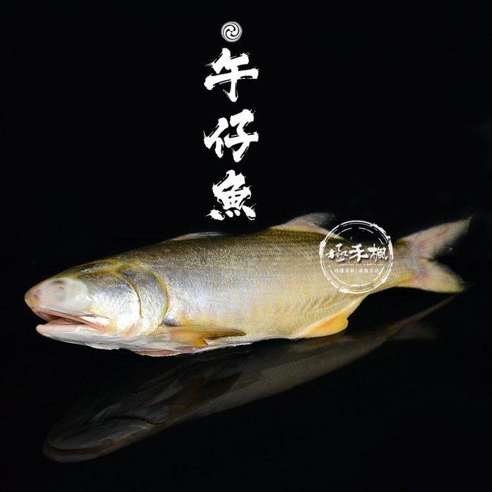 極禾楓肉舖~野生午子魚~單條真空包約300G~400G