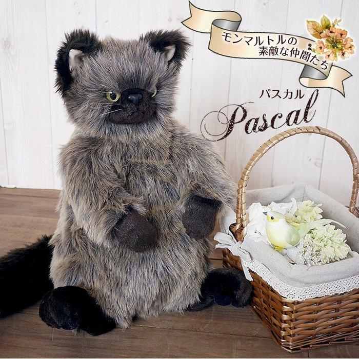 ※龍貓共和國※《日本製Cuddly療癒 仿真擬真小貓 喵星人 寵物貓 深灰色波斯貓 絨毛娃娃 玩偶 布偶40公分》禮物