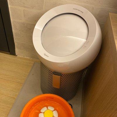Dyson 個人風扇 空氣清淨機