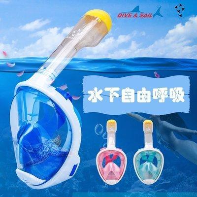 【購物百分百】DIVE&SAIL 浮潛全面罩兒童潛水鏡鼻呼吸管面鏡二合一 防霧潛水鏡 面罩 潛水面鏡 遊泳 浮潛
