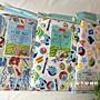 日本帶回-野餐墊 三麗鷗 Hello kitty 凱蒂貓 玩具總動員 怪獸電力公司 芝麻街  地墊 兒童露營