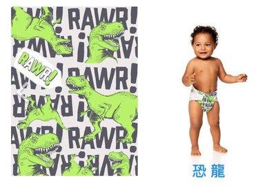 【美國預購】The Honest 環保 有機 無毒  寶寶尿布 -恐龍