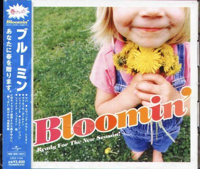八八 - BLOOMIN'-READY FOR THE NEW SEASON! - 日版 CD ABBA  ASIA