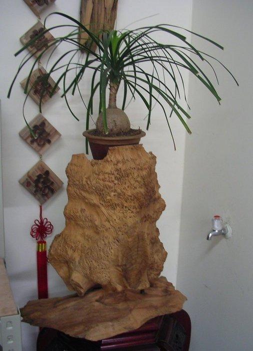 (禪智木之藝)立體字木雕 樟木 立體字 雕刻 立體雕刻藝術 工廠直營-木樹