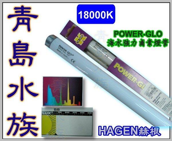五1中0↓↓庫存品。青島水族。A-1628S加拿大 赫根 T8-POWER-GLO海水強力鹵素燈管==30W