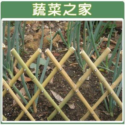 全館滿799免運【蔬菜之家011-A1...