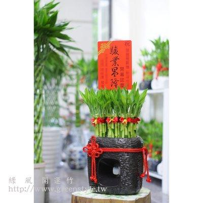 【綠風園藝~ 開運竹 宅配】(黑回)組合造型開運竹【送禮盆栽】05
