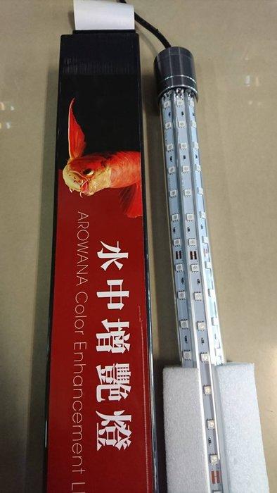 【魚舖子水族】最新款  LED水中燈 血鸚鵡  龍魚 增艷  2尺  (三排燈珠)