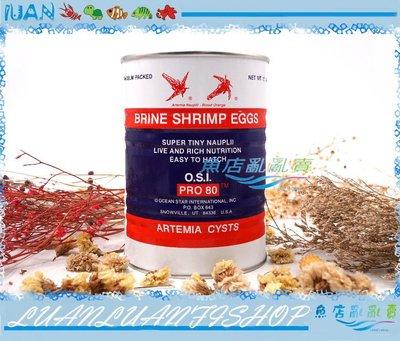 【~魚店亂亂賣~】美國進口Inve貓頭鷹-頂級3A乾燥特級99%豐年蝦卵425G(高孵化率)特A級卵