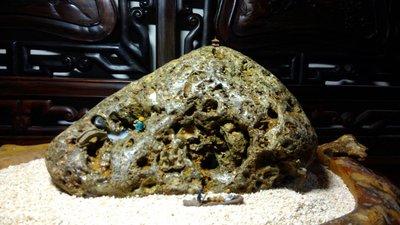石之華攻石山房-東北角珊瑚岩.27*16*16cm