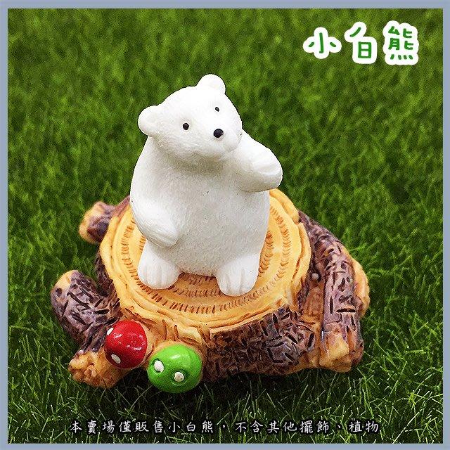 台北►►多彩水族◄◄嚴選《小白熊》北極熊 水族 魚缸 鄉村 田園 造景及桌上擺飾 多肉 微景觀