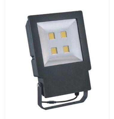 萬華好商量~舞光 LED 200W 泛光燈 大衛 投射燈 廣告燈 防水 單電壓 投光燈 白光/黃光 IP66 招牌燈