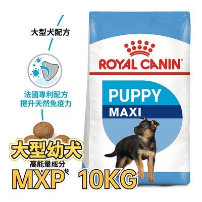 ✪第一便宜✪ ROYAL CANIN 法國皇家 MXP / AGR32 大型幼犬 10KG / 10公斤 犬糧