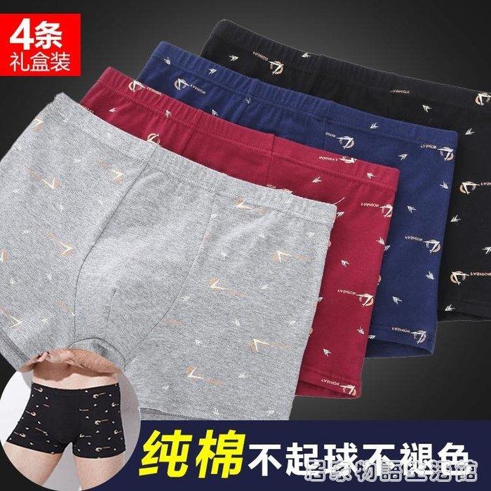 男士內褲純棉平角褲青年莫代爾褲頭男生韓版個性透氣全棉四角褲潮