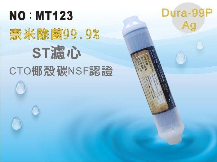 【龍門淨水】ST 奈米除菌99.9%濾心 後置濾心 淨水器 飲水器(MT123)