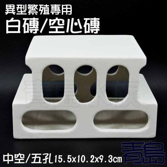 Y。。。青島水族。。。JF1216-W白色力量-異型繁殖專用白磚 空心磚 小白宮 異形甕 短鯛鼠魚躲藏裝飾==中空/五孔