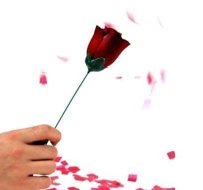 【意凡魔術小舖】 火把玫瑰2代--自動火把變玫瑰火焰玫瑰(單手操作)舞台魔術
