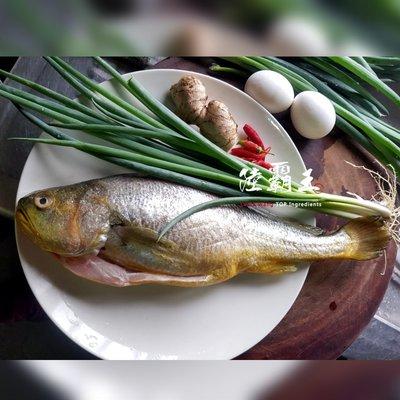 ☆大黃魚☆新鮮黃魚 去鱗去肚去鰓 全新生活 優質蛋白質640G±10% $350起【陸霸王】