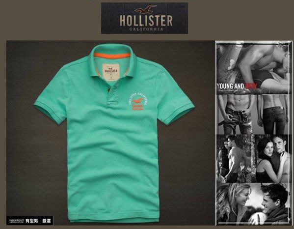 有型男~ A&F 副牌 Hollister 2013 春夏精典海鷗logo Embarcadero Polo  green 嫩綠 真品 現貨 S M L XL
