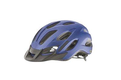 全新 公司貨 2020 新品 捷安特 GIANT COMPEL MIPS 亞洲頭型自行車安全帽