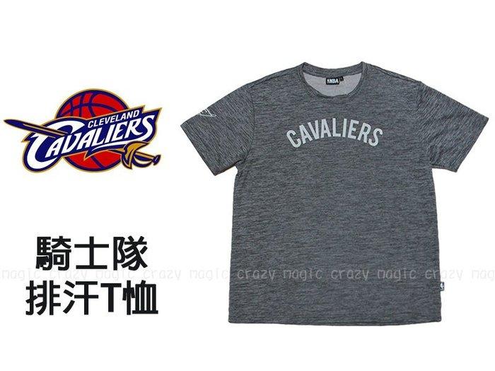 NBA 排汗衣 透氣網 水洗灰 克里夫蘭 騎士隊 刷色 # 8730213-011