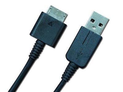 【飛鴻數位】PSVita  1000型專用 副廠USB 2合一 傳輸充電線  (裸裝)『光華商場自取』