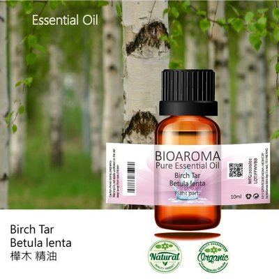 【芳香療網】樺木精油Birch Tar - Betula lenta 10ml