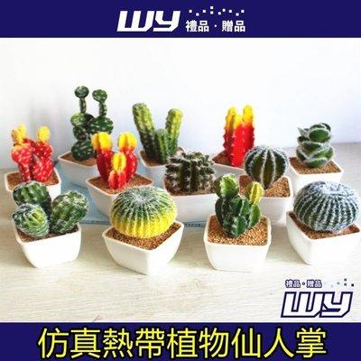 【WY禮品‧贈品】【創意仿真熱帶植物仙...
